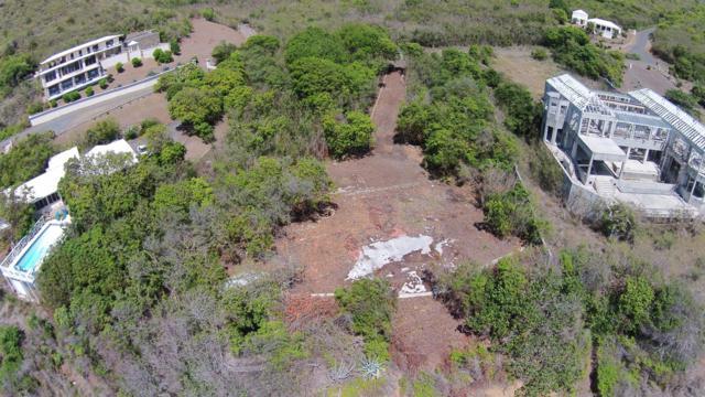 17 South Grapetree Eb, St. Croix, VI 00820 (MLS #19-830) :: Hanley Team | Farchette & Hanley Real Estate