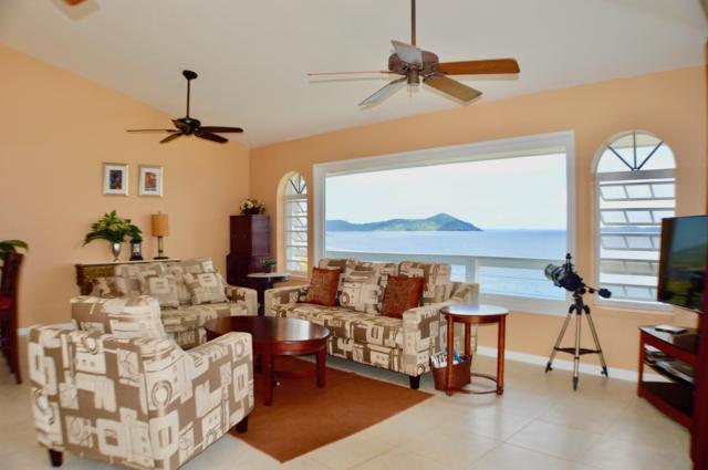 6E Nazareth Rh, St. Thomas, VI 00802 (MLS #19-85) :: Hanley Team | Farchette & Hanley Real Estate