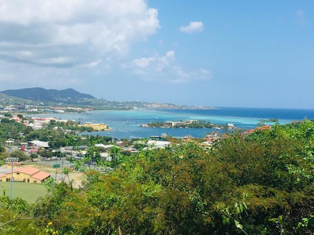 115 Eliza's Retreat Ea, St. Croix, VI 00820 (MLS #19-853) :: Hanley Team | Farchette & Hanley Real Estate