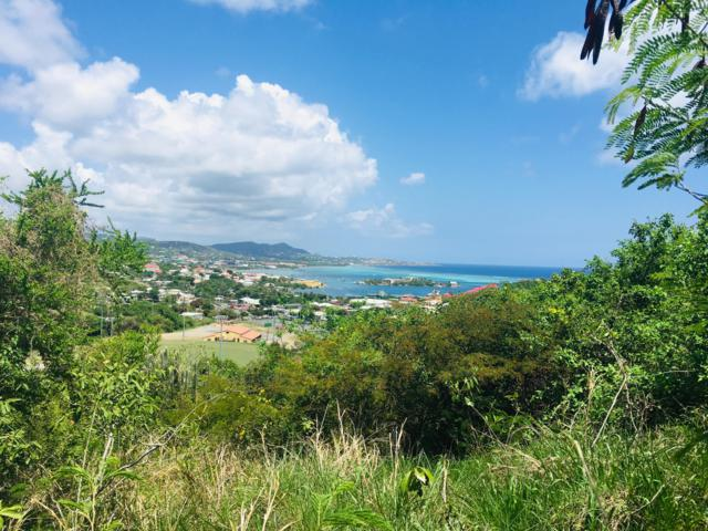 114 Eliza's Retreat Ea, St. Croix, VI 00820 (MLS #19-855) :: Hanley Team | Farchette & Hanley Real Estate