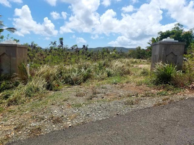 33 Colquohoun Ki, St. Croix, VI 00840 (MLS #19-859) :: Coldwell Banker Stout Realty