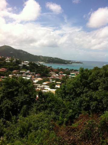 14 Address Not Published, St. Thomas, VI 00000 (MLS #19-86) :: Hanley Team | Farchette & Hanley Real Estate