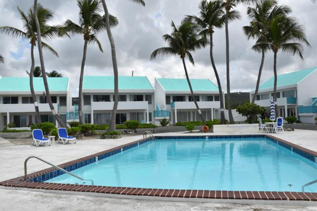 V-1 La Grande Prince Co, St. Croix, VI 00820 (MLS #19-864) :: Hanley Team   Farchette & Hanley Real Estate
