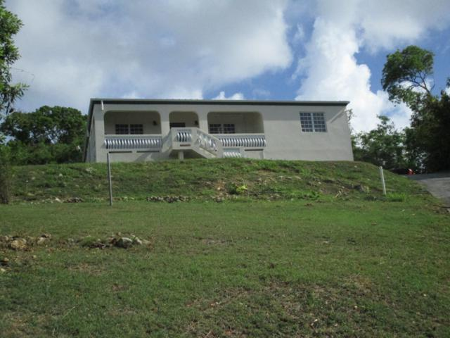 2-A-23 Sion Hill Qu, St. Croix, VI 00820 (MLS #19-870) :: Coldwell Banker Stout Realty