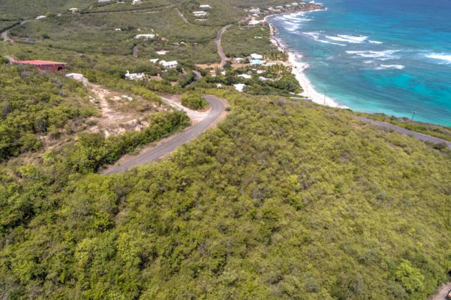 81 South Slob Eb, St. Croix, VI 00820 (MLS #19-9) :: Hanley Team | Farchette & Hanley Real Estate