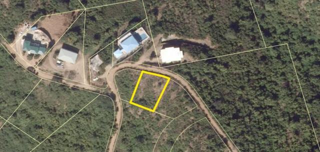 25-A Contentment Co, St. Croix, VI 00820 (MLS #19-901) :: Hanley Team | Farchette & Hanley Real Estate
