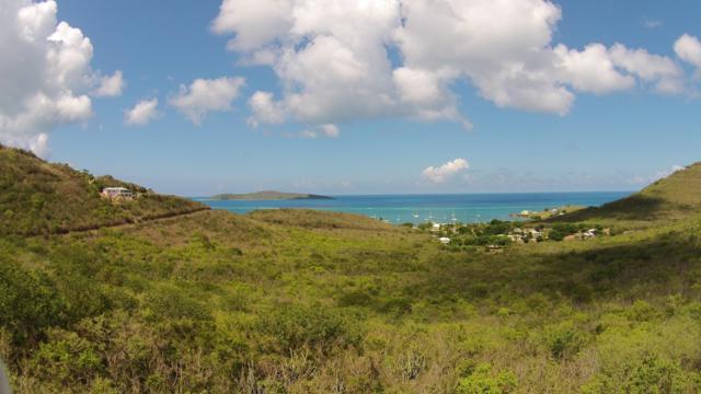 66 South Slob Eb, St. Croix, VI 00820 (MLS #19-91) :: Hanley Team | Farchette & Hanley Real Estate