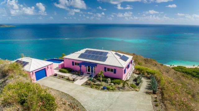 51 & 52 North Grapetree Eb, St. Croix, VI 00820 (MLS #19-96) :: Hanley Team | Farchette & Hanley Real Estate