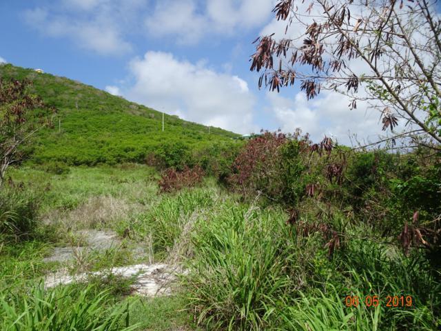 76 Catherine's Hope Eb, St. Croix, VI 00820 (MLS #19-960) :: Hanley Team | Farchette & Hanley Real Estate