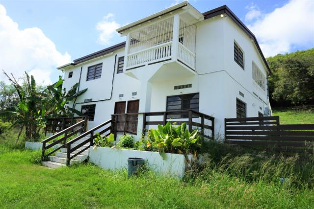 26-C Work & Rest Qu, St. Croix, VI 00820 (MLS #19-964) :: Hanley Team | Farchette & Hanley Real Estate