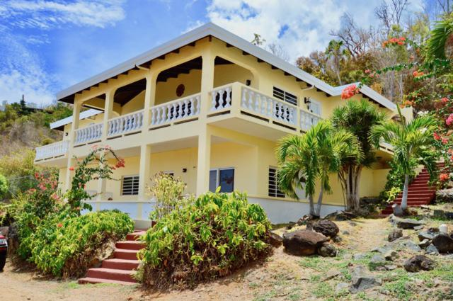 38-HD Lindberg Bay Ss, St. Thomas, VI 00802 (MLS #19-966) :: Hanley Team | Farchette & Hanley Real Estate