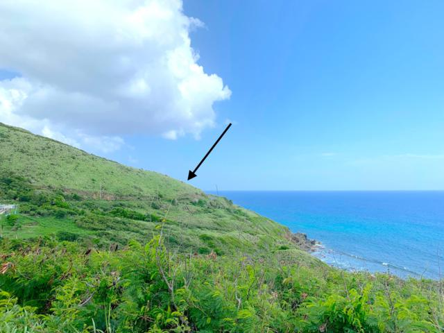 69A Clairmont Nb, St. Croix, VI 00820 (MLS #19-967) :: Hanley Team | Farchette & Hanley Real Estate