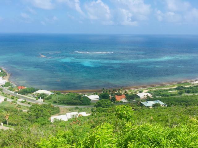 29-B South Slob Eb, St. Croix, VI 00820 (MLS #19-977) :: Hanley Team | Farchette & Hanley Real Estate