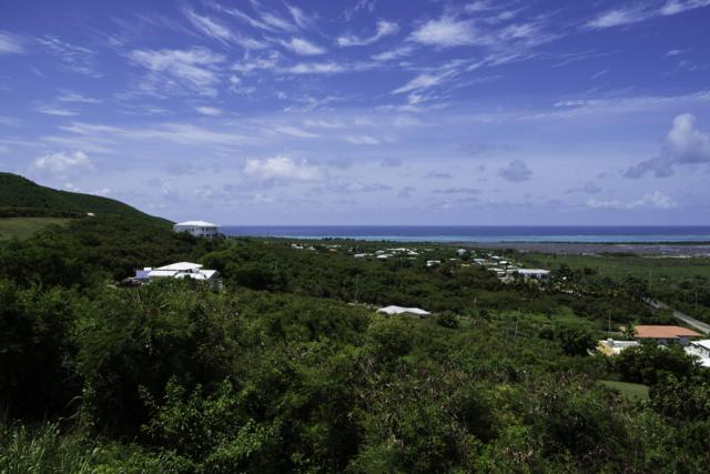 3 Union & Mt. Washington Ea, St. Croix, VI 00820 (MLS #19-980) :: Hanley Team | Farchette & Hanley Real Estate