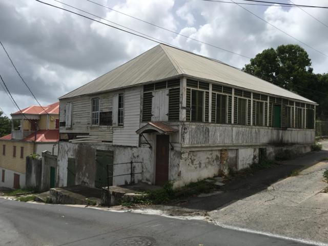 Address Not Published, St. Croix, VI 00820 (MLS #19-992) :: Hanley Team | Farchette & Hanley Real Estate