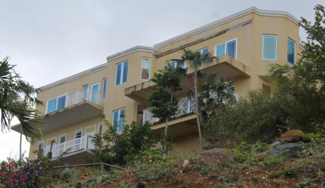 2-18 Bonne Esperance We, St. Thomas, VI 00802 (MLS #19-996) :: Hanley Team | Farchette & Hanley Real Estate
