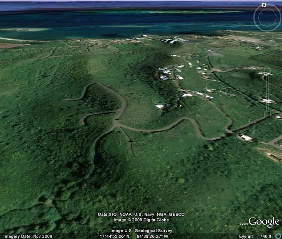 119 Solitude Eb, St. Croix, VI 00820 (MLS #20-1011) :: Hanley Team | Farchette & Hanley Real Estate