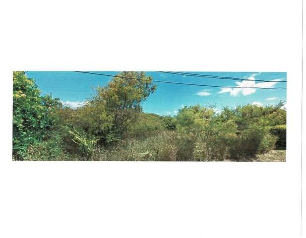 270 Enfield Green Pr, St. Croix, VI 00840 (MLS #20-1028) :: Hanley Team | Farchette & Hanley Real Estate