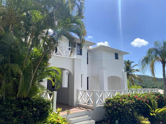 1601 Fountain Na, St. Croix, VI 00840 (MLS #20-1029) :: Coldwell Banker Stout Realty