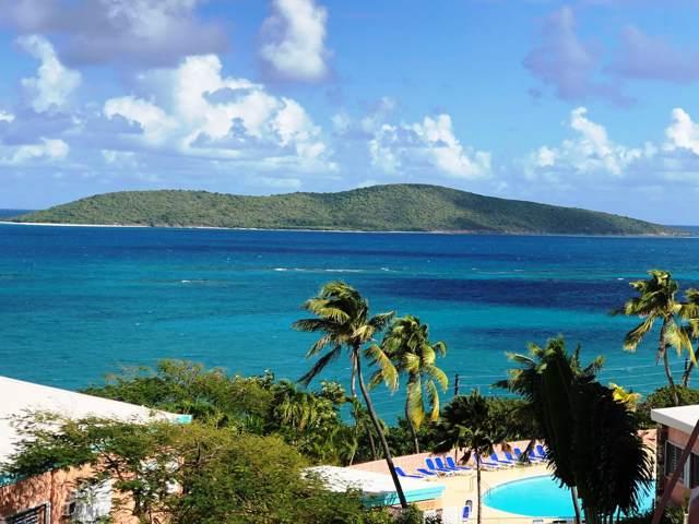 12 Coakley Bay Ea, St. Croix, VI 00820 (MLS #20-106) :: The Boulger Team @ Calabash Real Estate