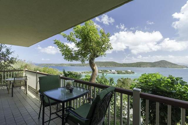 15 Smith Bay Ee, St. Thomas, VI 00802 (MLS #20-1060) :: Hanley Team | Farchette & Hanley Real Estate