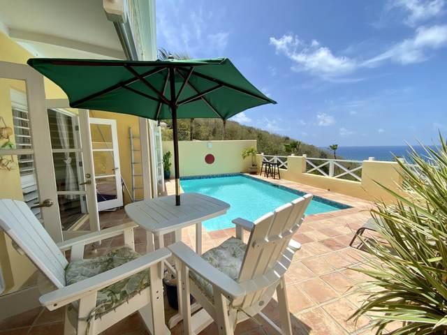 5 Teagues Bay Eb, St. Croix, VI 00820 (MLS #20-1062) :: The Boulger Team @ Calabash Real Estate