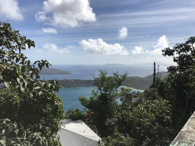 9D-1-1 Lerkenlund Gns, St. Thomas, VI 00802 (MLS #20-1079) :: Coldwell Banker Stout Realty