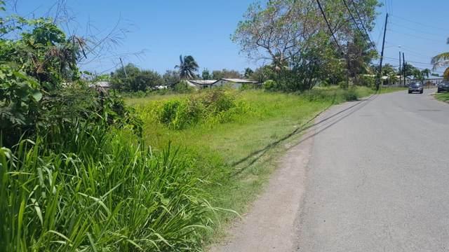 Plot 20 William's De Pr, St. Croix, VI 00840 (MLS #20-1091) :: Hanley Team | Farchette & Hanley Real Estate