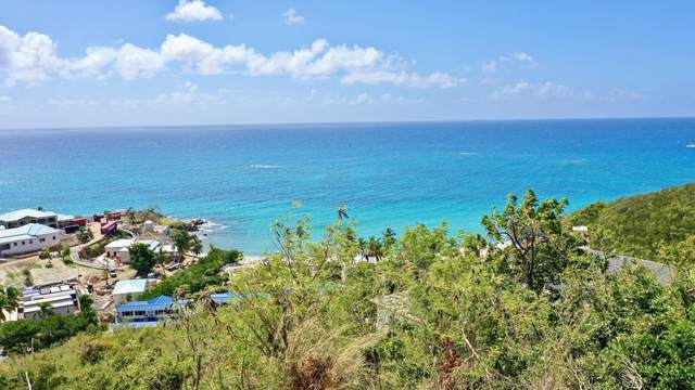 17-49 Frenchman Bay Fb, St. Thomas, VI 00802 (MLS #20-1097) :: Coldwell Banker Stout Realty