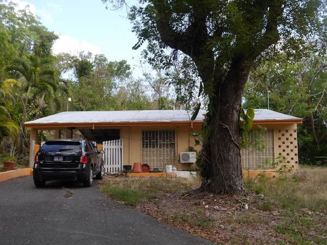 2-B & C Rattan Qu, St. Croix, VI 00820 (MLS #20-110) :: Coldwell Banker Stout Realty