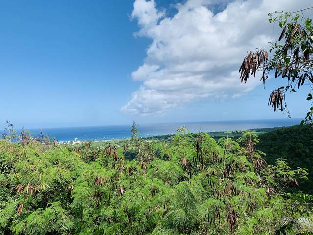 272&273 La Grange We, St. Croix, VI 00820 (MLS #20-1102) :: Hanley Team | Farchette & Hanley Real Estate