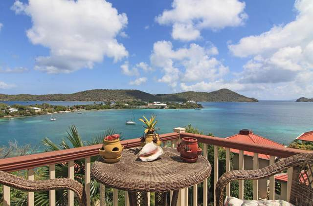 25 Smith Bay Ee, St. Thomas, VI 00802 (MLS #20-1116) :: Hanley Team | Farchette & Hanley Real Estate