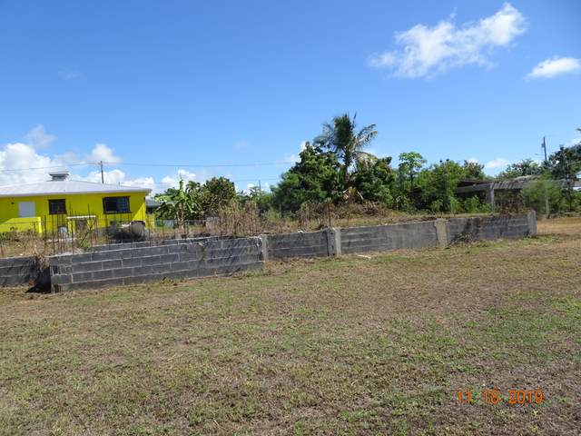 1-C Hannah's Rest We, St. Croix, VI 00840 (MLS #20-1144) :: Hanley Team | Farchette & Hanley Real Estate
