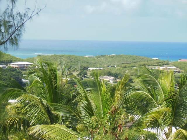 149 Catherine's Hope Eb, St. Croix, VI 00820 (MLS #20-115) :: Hanley Team | Farchette & Hanley Real Estate