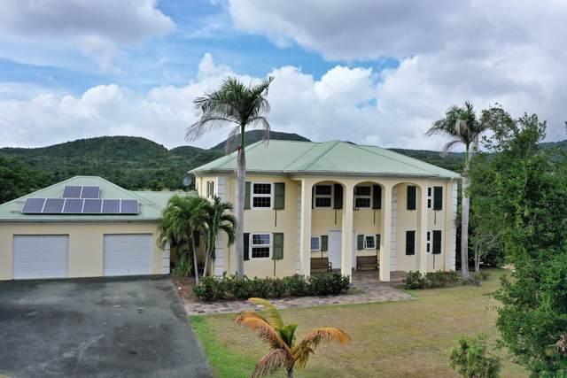 17 & 18 River Pr, St. Croix, VI 00850 (MLS #20-1159) :: Hanley Team | Farchette & Hanley Real Estate