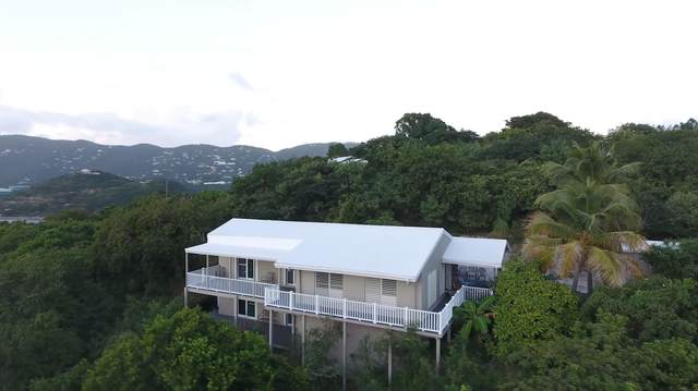 80REM/81A Water Island Ss, St. Thomas, VI 00802 (MLS #20-1165) :: Hanley Team | Farchette & Hanley Real Estate