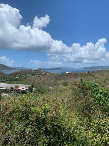 100-21 Smith Bay Ee, St. Thomas, VI 00802 (MLS #20-1211) :: Hanley Team | Farchette & Hanley Real Estate