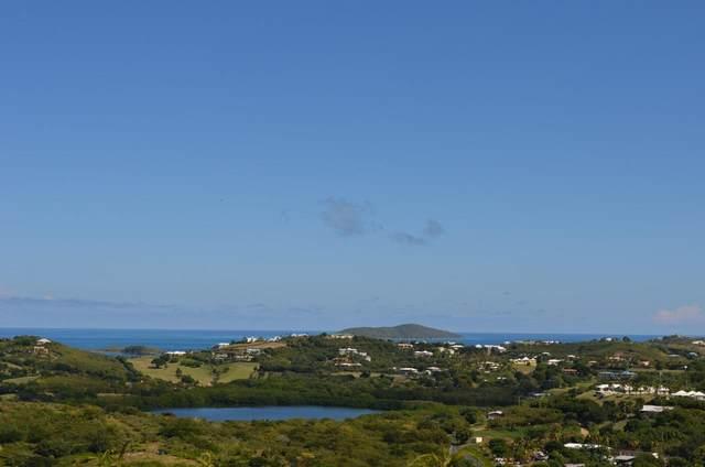 64 Eliza's Retreat Ea, St. Croix, VI 00820 (MLS #20-1217) :: The Boulger Team @ Calabash Real Estate