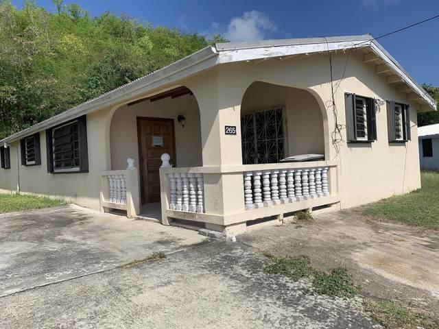265 Mt. Pleasant Pr, St. Croix, VI 00840 (MLS #20-1233) :: Coldwell Banker Stout Realty