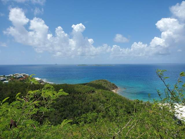21-55 Frenchman Bay Fb, St. Thomas, VI 00802 (MLS #20-1241) :: The Boulger Team @ Calabash Real Estate