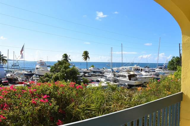 C-17 Mt. Welcome Ea, St. Croix, VI 00820 (MLS #20-1249) :: The Boulger Team @ Calabash Real Estate
