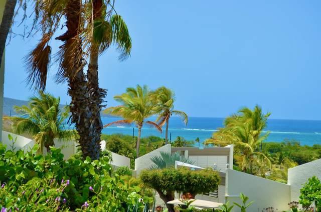 431 Teagues Bay Eb, St. Croix, VI 00820 (MLS #20-1250) :: The Boulger Team @ Calabash Real Estate