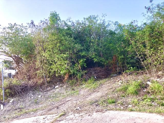 94 V.I. Corp Lands Pr, St. Croix, VI 00000 (MLS #20-1258) :: Coldwell Banker Stout Realty
