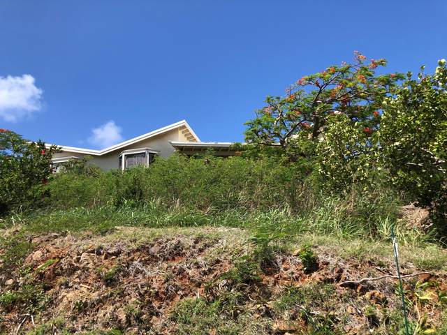 8-24 Nazareth Rh, St. Thomas, VI 00802 (MLS #20-1287) :: Hanley Team | Farchette & Hanley Real Estate