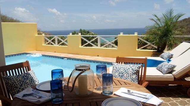 14 Teagues Bay Eb, St. Croix, VI 00820 (MLS #20-1313) :: The Boulger Team @ Calabash Real Estate