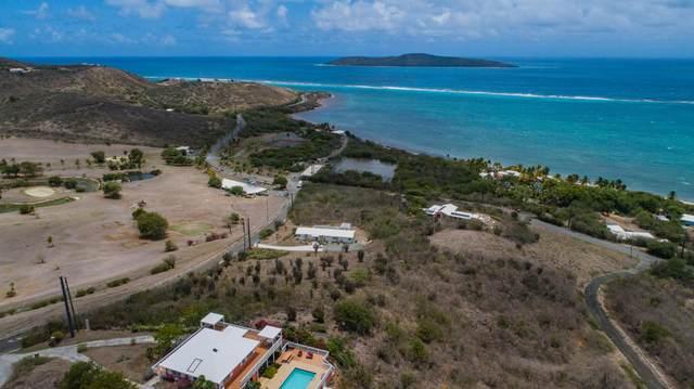 3 Teagues Bay Eb, St. Croix, VI 00820 (MLS #20-1326) :: Hanley Team   Farchette & Hanley Real Estate