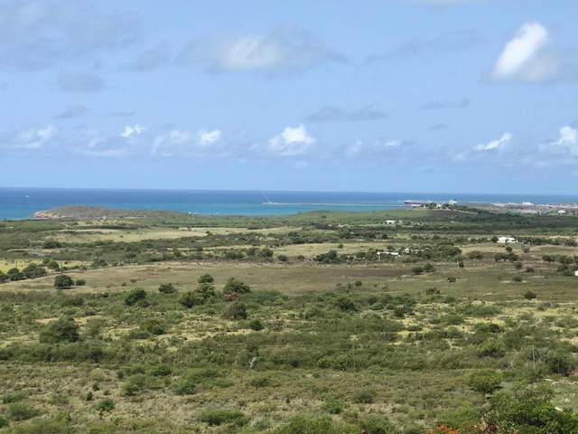 54 Grange Stock Est Co, St. Croix, VI 00820 (MLS #20-1347) :: Coldwell Banker Stout Realty