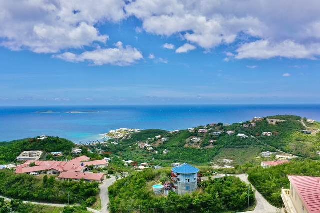 61-49 Bolongo Fb, St. Thomas, VI 00802 (MLS #20-1370) :: Coldwell Banker Stout Realty