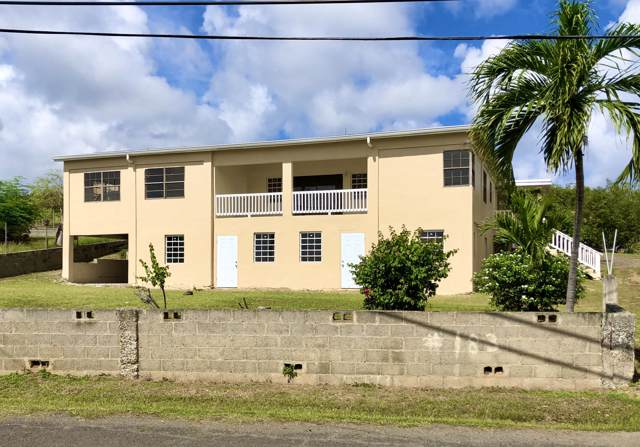 183 Hermon Hill Co, St. Croix, VI 00820 (MLS #20-138) :: Coldwell Banker Stout Realty