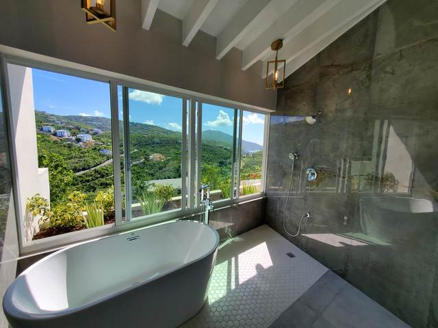 U Lovenlund Gns, St. Thomas, VI 00802 (MLS #20-1385) :: Coldwell Banker Stout Realty